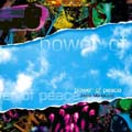 Power of Peace [CD]