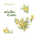 Winter Risen [CD]
