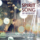 Spirit & Song By Request: Contemporary Traditions [CD]